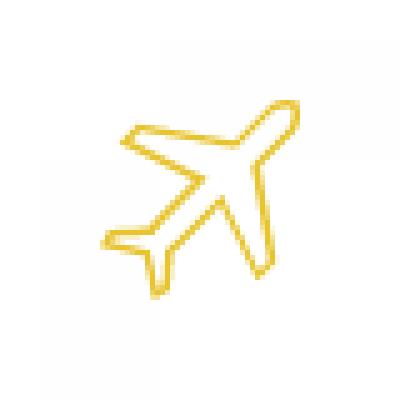 国际空运代理